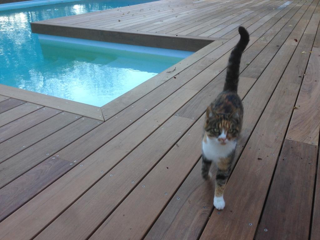 501-belle-plage-de-piscine-en-bois-exotique-ipe-a-savignieux-ain
